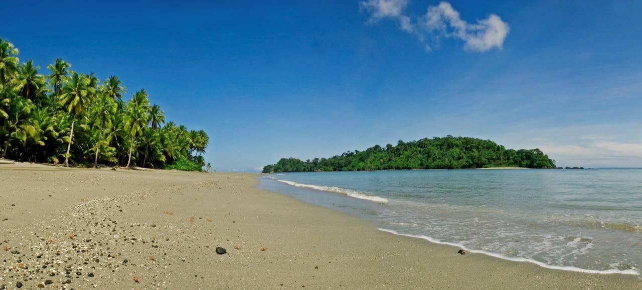 18- Isla Gorgona