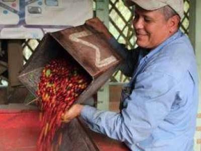 Pueblos con Encanto Coffee Experience