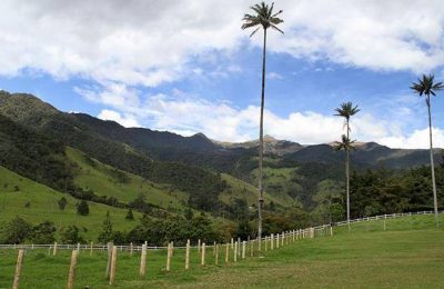 Salento Colombia for Coffee Lovers